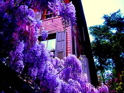 Photograph - Purple Cheer by Zafer Gurel