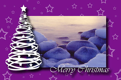 Photograph - Purple Christmas by Randi Grace Nilsberg