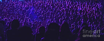 Photograph - Purple Crowd by Joshua McCullough