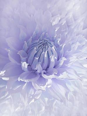 Photograph - Purple Dahlia Flower by Jennie Marie Schell
