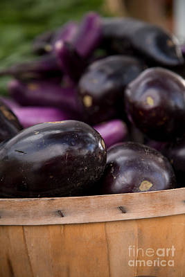 Vegetable Market Photograph - Purple Eggplant In Basket by Rebecca Cozart