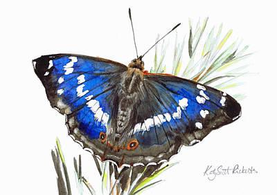Butterfly Drawing - Purple Emperor Butterfly by Katy Scott Ricketts