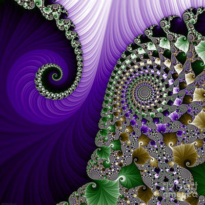 Accent Digital Art - Purple Feathers by Mary Machare