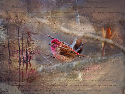 Digital Art - Purple Finch Perched by J Larry Walker