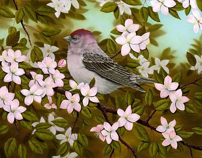 Finch Painting - Purple Finch by Rick Bainbridge