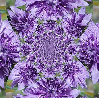Photograph - Purple Floral Kaleidoscope by Sheri McLeroy