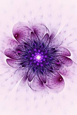 Blooming Digital Art - Single Purple Flower by Anastasiya Malakhova