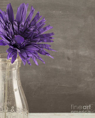 Photograph - Purple Flower by Juli Scalzi
