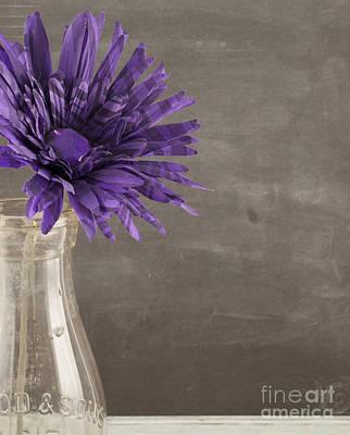 Breathe Photograph - Purple Flower by Juli Scalzi
