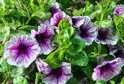Photograph - Purple Flower Majesty by Chris McKenna