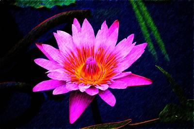Photograph - Purple Flower by Richard Zentner
