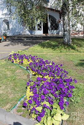 Purple Flowerbed Original by Evgeny Pisarev