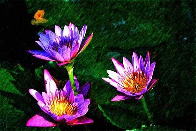 Photograph - Purple Flowers 2 by Richard Zentner