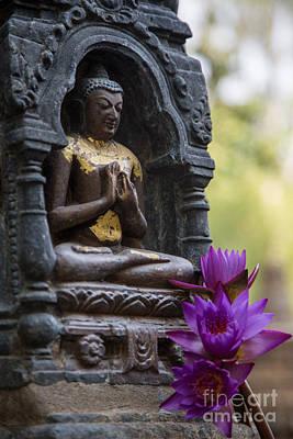 Photograph - Purple Flowers For Buddha by Mindah-Lee Kumar