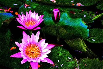 Photograph - Purple Flowers by Richard Zentner