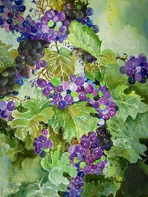 Painting - Purple Grapes by Marilyn  Clement