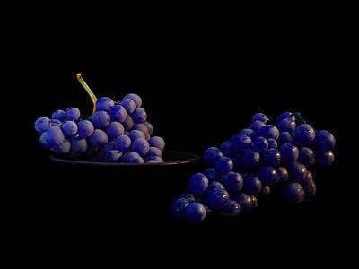 Photograph - Purple Grapes by Mark Blauhoefer