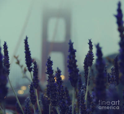 Golden Gate Photograph - Purple Haze Daze by Jennifer Ramirez