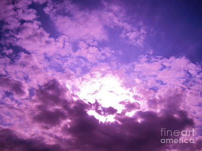 Photograph - Purple Heaven by Casey Tovey And Sherry Lasken