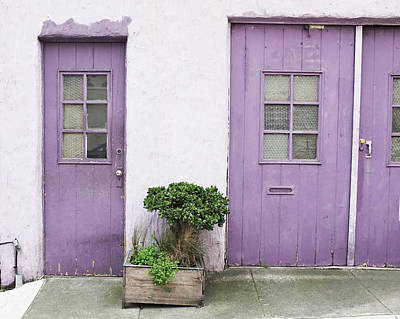 Photograph - Purple House by Lupen  Grainne