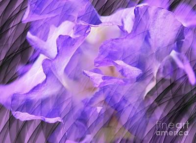 Purple Iris Flower Abstract Art Print by Judy Palkimas