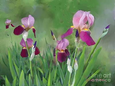 Yard Sale Digital Art - Purple Iris Flowers by Dessie Durham