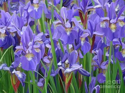 Painting - Purple Iris Garden by Tim Gilliland
