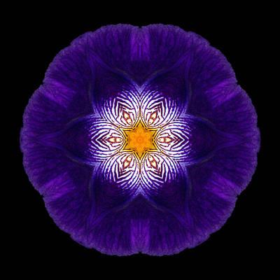 Purple Iris II Flower Mandala Art Print