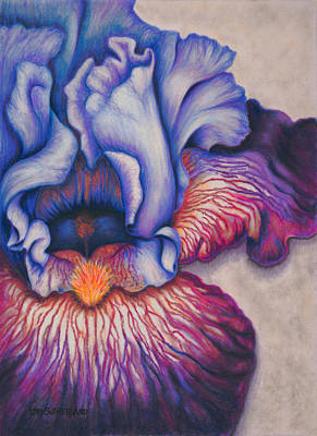 Painting - Purple Iris by Lori Sutherland