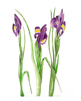 Art Print featuring the painting Purple Iris  by Nan Wright