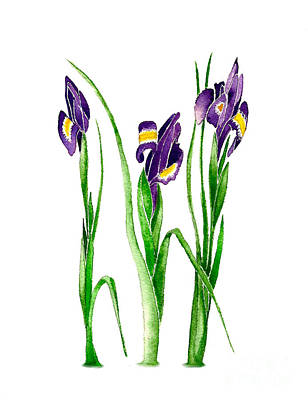 Painting - Purple Irises by Nan Wright