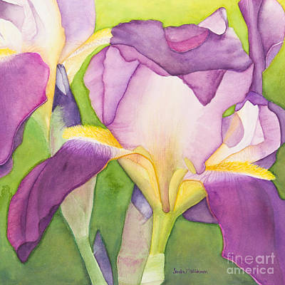 Painting - Purple Irises by Sandra Neumann Wilderman