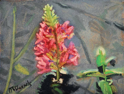 Art Print featuring the painting Purple Loosestrife by Michael Daniels