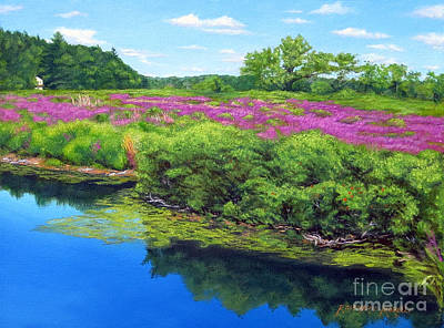 Boston Ma Painting - Purple Loosestrife On Charles River by Rosemarie Morelli