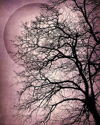 Photograph - Purple Magic Moon by Patricia Strand