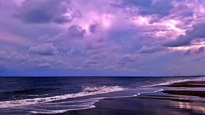Purple Majesty Original
