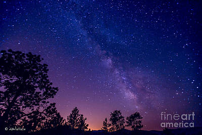 Photograph - Colorado Purple Milky Way by D Wallace