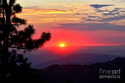 Photograph - Purple N Red Idyllwild by Third Eye Perspectives Photographic Fine Art