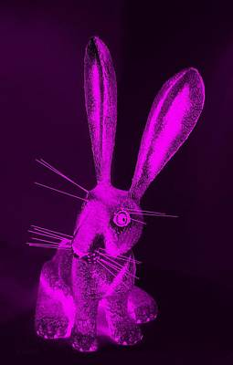 Photograph - Purple New Mexico Rabbit by Rob Hans