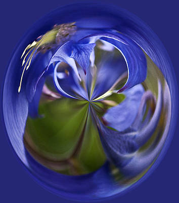 Photograph - Purple Orb by Ron Roberts