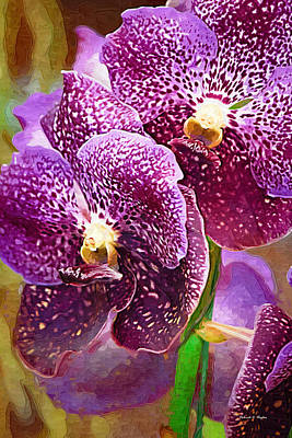 Photograph - Purple Orchid by Deborah Hughes