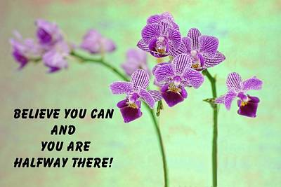 Positive Attitude Photograph - Purple Orchid Quote-2 by Rudy Umans