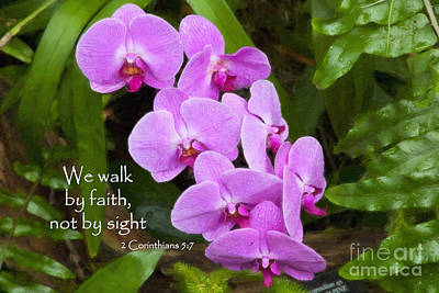 Photograph - Purple Orchids With Scripture by Jill Lang