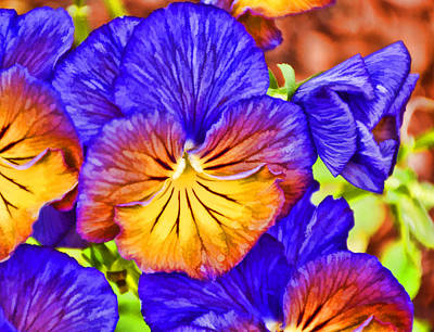 Stylized Photograph - Purple Pansies Stylized by Jeanne May