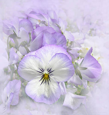 Photograph - Purple Pansy Flowers by Jennie Marie Schell