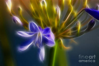 Purple Passion 6318-fractal Art Print by Gary Gingrich Galleries