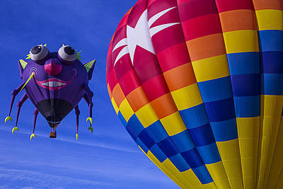 Photograph - Purple People Eater Rides The Wind by Garry Gay