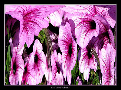 Photograph - Purple Petunias Abstract by Rose Santuci-Sofranko