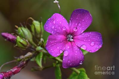 Purple Rain... Art Print