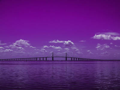 Photograph - Purple Rain by Randy Sylvia
